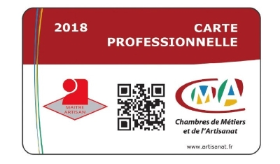 Carte professionnelle 2018