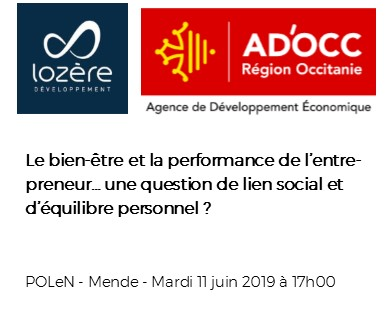 Le bien-être et la performance de l'entrepreneur: une question de lien social et d'équilibre personnel ?